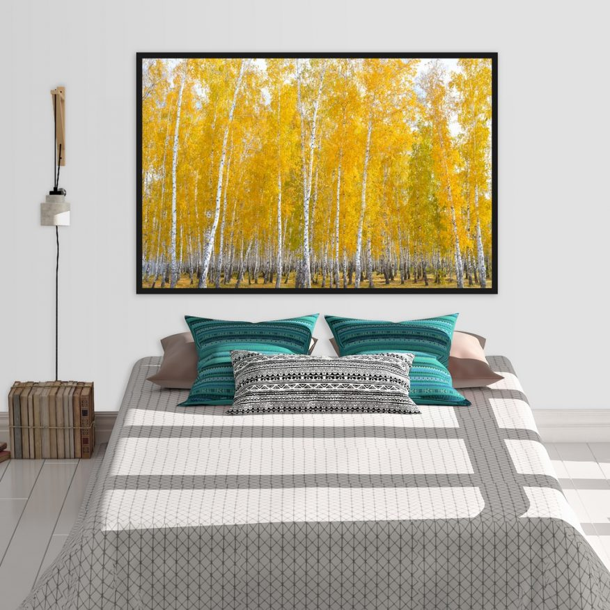 Tranh Canvas Rừng Bạch Dương Nghệ Thuật YH00304